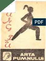 Kung Fu Arta Pumnului