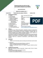 Guía de Prácticas - Transformación Química Forestal