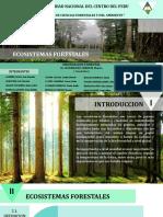 ECOSISTEMAS-FORESTALES (1)