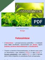 Fotossíntese.pptx