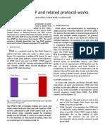 RTMP Report