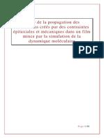 report ff.pdf