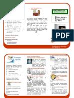 Folheto-Dicas de Seguranca_net