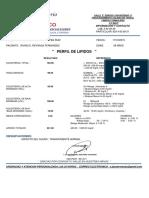 P.LIP. IRVING.pdf