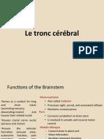 4. le tronc cerebral