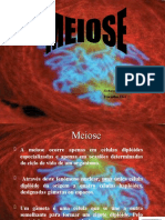 Meiose.ppt