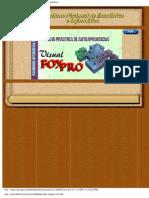FOXPRO_GUIA_PRACTICA_DE_AUTOAPRENDIZAJE