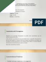 CARACTERÍSTICAS DEL NICARAGUENSE.pptx
