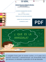 amigdalas.pptx