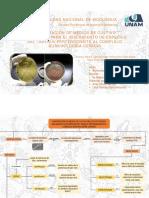 Mapa Conceptual 1.pdf