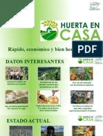 agriultura urbana