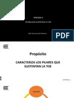06 PILARES QUE SUSTENTAN LA TOE (2).pptx