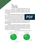 Atividade Siderurgia -  Norival Maia - 25_09.pdf