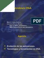 Windows_DNA-Mario