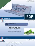 Origen de las organizaciones, propósito y definición Mauro Aguiar