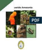 Mi querida Amazonia _ Qué desafío plantea