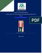 Eng Lamucene.pdf