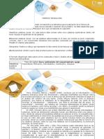 Anexo 1-Formato Técnica IRIA (1). IndividualElizabethGiraldo
