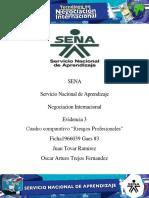 AA 9 EVidencia 3 .....pdf