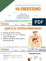 Grupo 6- sistema endocrino