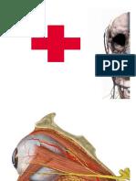 6 - Traumatismos, Infarto do Miocárdio e AVC
