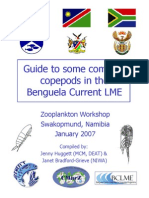 Guide to some common copepods in the Benguela Current LME