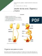Aparato reproductor de las aves. Órganos y formación del huevo.pdf