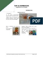 JunKombucha-Sugestões-de-Iniciação_V5-1 (2).pdf