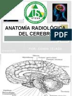 anatomía radiológica del cerebro
