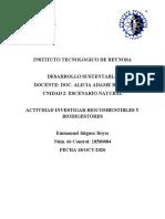 Biodigestor y Biocombustible