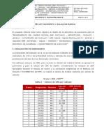 INF-PAV–003-2020 (3)