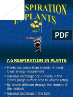 7.6 - Respiration in Plants