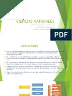 Fichas informativas de los animales by Yagual Gabriela