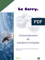 EOI_BeBerry_2012.pdf
