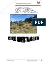 03. INFORME IMPACTO AMBIENTAL ACCOMARCA