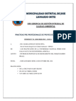Parque Ramiro Priale Informe