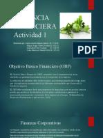 ACTIVIDAD 1 GERENCIAS FINANCIERA.pptx
