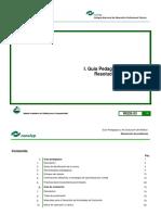 7-Guias-resolucion-problemas03.pdf