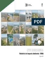 Usina Termelétrica de Barcarena_RIMA.pdf