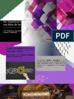 Objetivos de marketing de las organizaciones con y sin fines de lucro