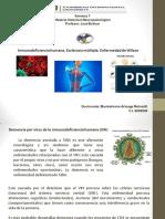 inmunodeficiencia-humana-esclerosis-múltiple-enfermedad-de-wilson-591b8c58383d4