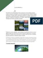 tarea de sustentabilidad.docx