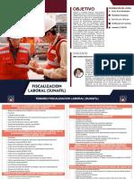 FISCALIZACION-LABORAL-SUNAFIL.pdf