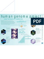 human_genome poster