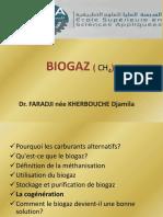 BIOGAZ.pdf