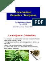 chapitre 7 - cannabis_Fr