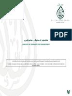 CANEVAS DE DEMANDE DE FINANCEMENT.pdf