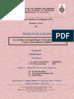 Les methodes electrophoretique - Rochdi Mouad_1293.pdf