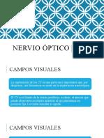 Nervio óptico parte B