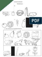 sortarea_si_clasificarea_obiectelor_dupa_criterii_date
